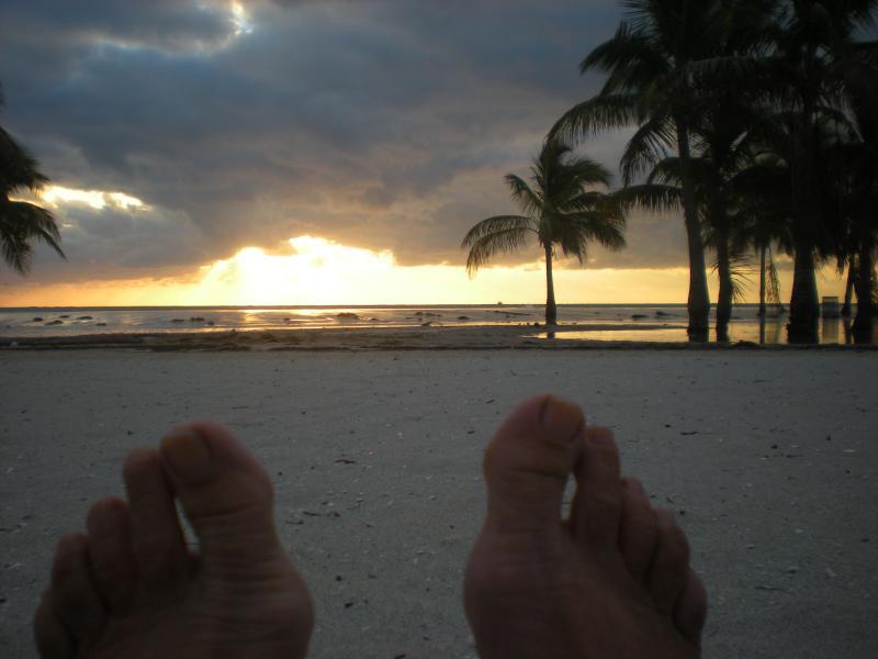 "Sunset a brilliant time of day! - Paver Park ""Lighthouse""  an ""Angeli Luce"" Retreat - Sarasota - rentals"