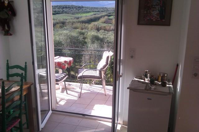 tzamika/ olive tree farm next to the sea  /apartem - Image 1 - Episkopi - rentals
