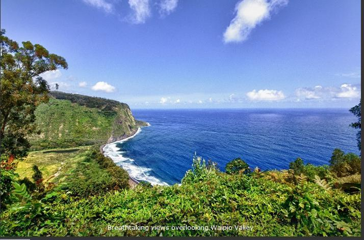 View from Balcony of Home -- for real - Waipio Ridge Home - Big Island Hawaii - rentals