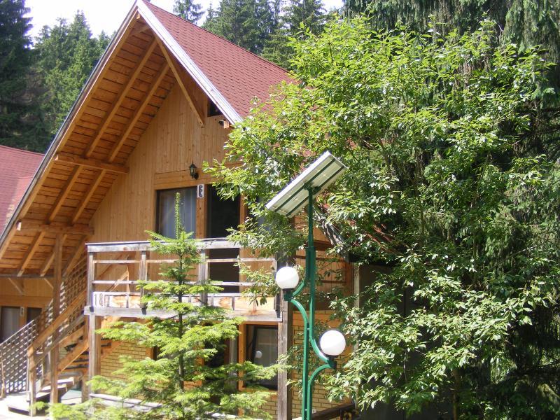 TraveLand Poiana Brasov - Two-Bedroom Apartment (4 - Image 1 - Poiana Brasov - rentals