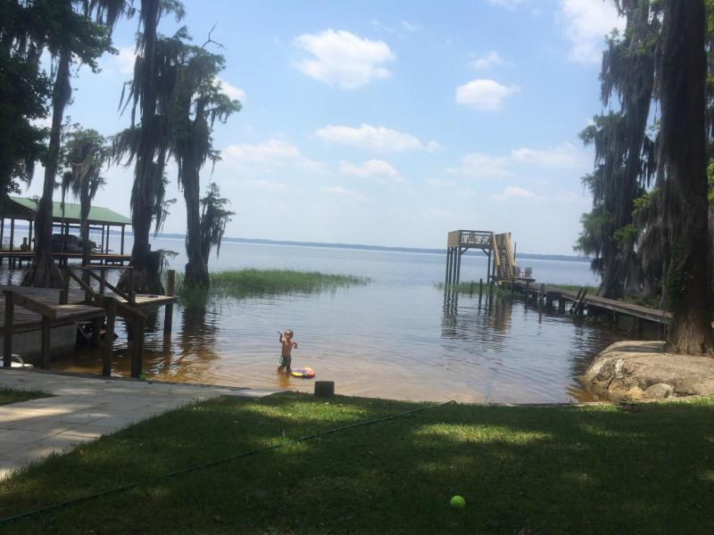 Nice sandy beach for swimming - Sandy Beach on Lake Santa Fe- Melrose, FL - Melrose - rentals