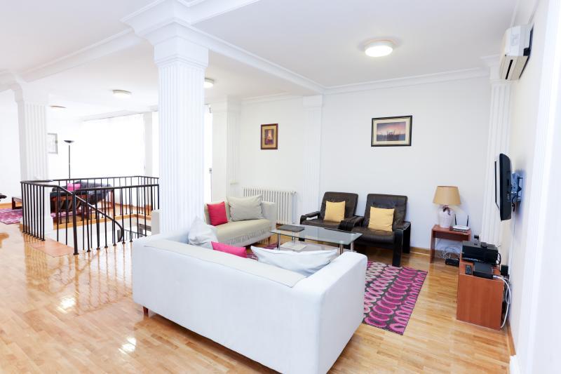Living room - Penthouse Vracar - 154m2 - 4 bedrooms - Belgrade - rentals