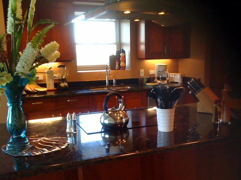 Luxury Ocean front condo - Image 1 - Jaco - rentals