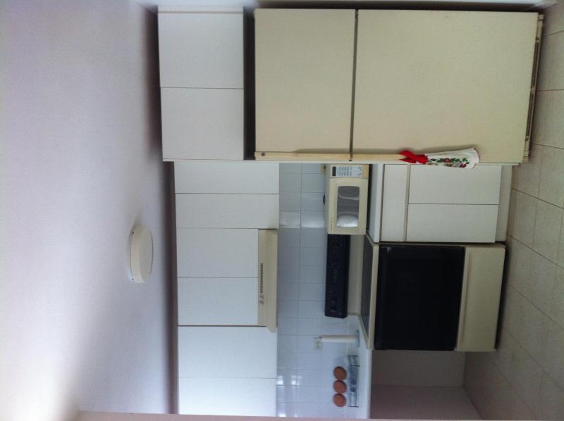 Confortable Apartment - Image 1 - Fajardo - rentals