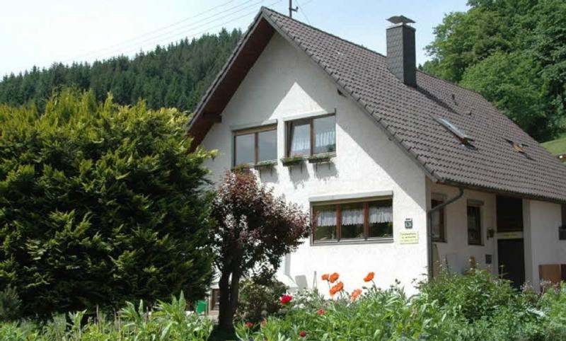 Vacation Home in Bad Rippoldsau-Schapbach - 1076 sqft, comfortable, quiet, friendly (# 5291) #5291 - Vacation Home in Bad Rippoldsau-Schapbach - 1076 sqft, comfortable, quiet, friendly (# 5291) - Bad Rippoldsau-Schapbach - rentals