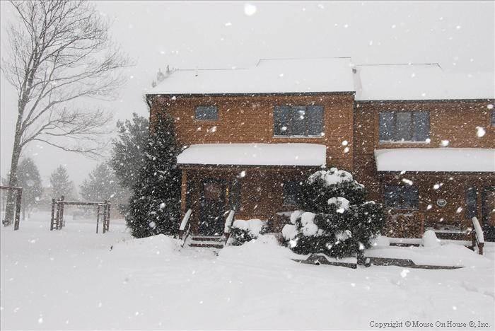 Deerfield 091 - Image 1 - Canaan Valley - rentals