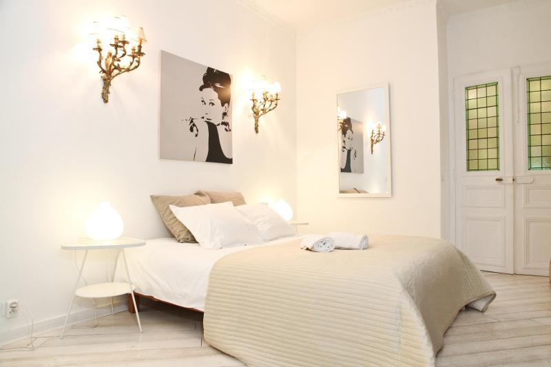 First bedroom - 18. 2BR LUXURY APARTMENT-TERRACE- LATIN QUARTER - Paris - rentals