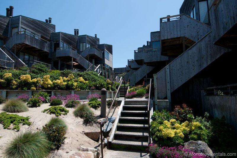 Ocean Harbor 108 - Image 1 - Monterey - rentals