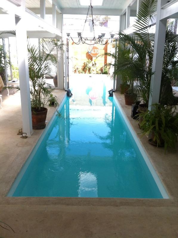 Fascinating new loft with swimming pool - Image 1 - Oaxaca - rentals