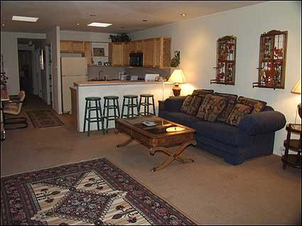View of living area - Walk to Gondola - Minutes from Restaurants - Aspen - rentals