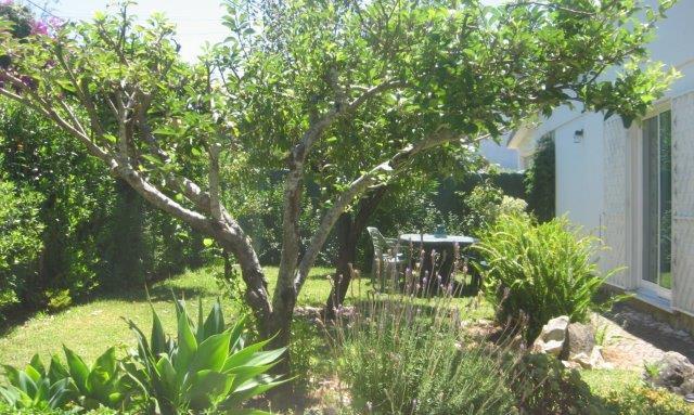 Cascais Garden Apartment - Image 1 - Cascais - rentals