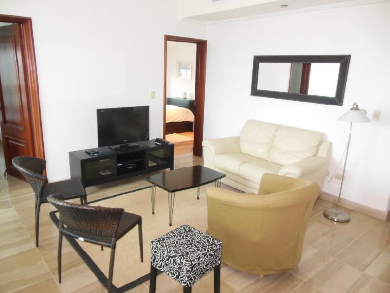 Apartamentos para ejecutivos con terraza y vista al mar - Image 1 - Santo Domingo - rentals