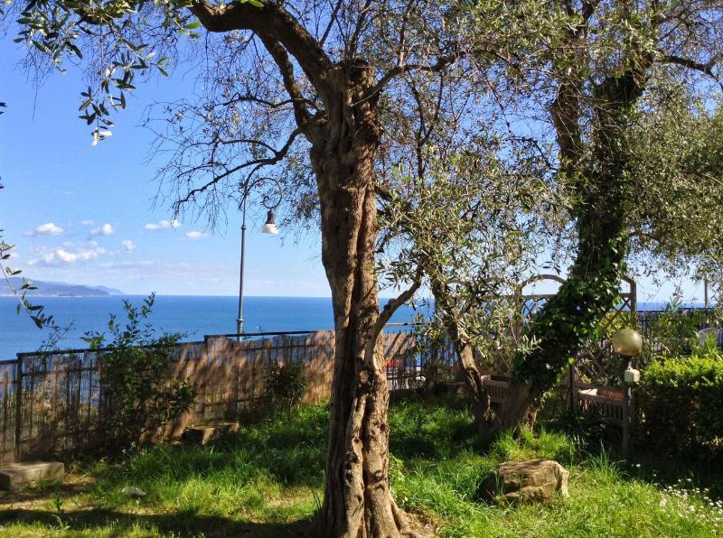Garden pic 1 - Andromeda 1stFL,Breathtaking view on Tigullio gulf - Rapallo - rentals