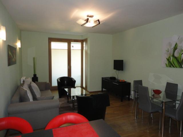 Open Plan Living Room - Angel Plaza Apartment near Old Town Krakow - Krakow - rentals