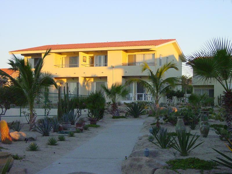 Morning Sun on VIVA #7- Lower Right - Small friendly complex on the Beach - VIVA - San Jose Del Cabo - rentals