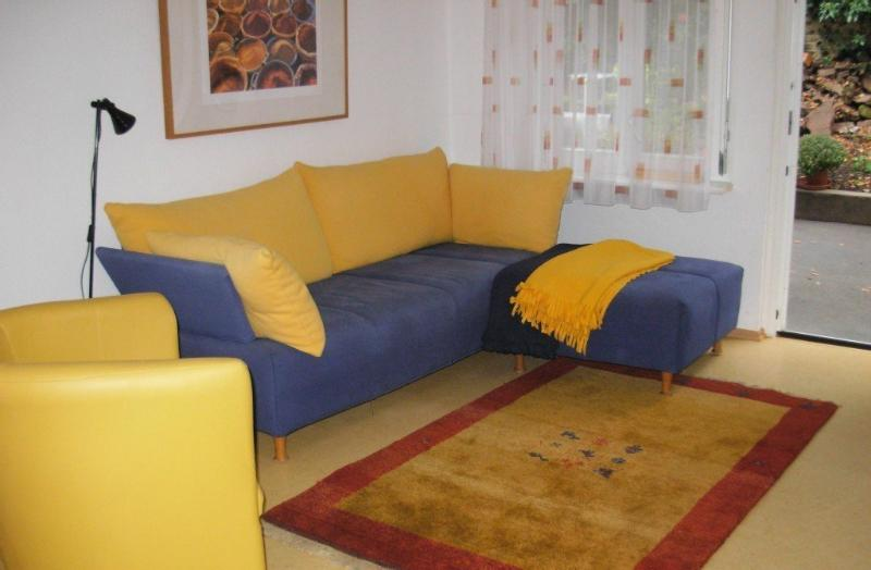 Vacation Apartment in Heidelberg - 484 sqft, wheelchair-accessible, clean, fully furnished (# 145) #145 - Vacation Apartment in Heidelberg - 484 sqft, wheelchair-accessible, clean, fully furnished (# 145) - Heidelberg - rentals