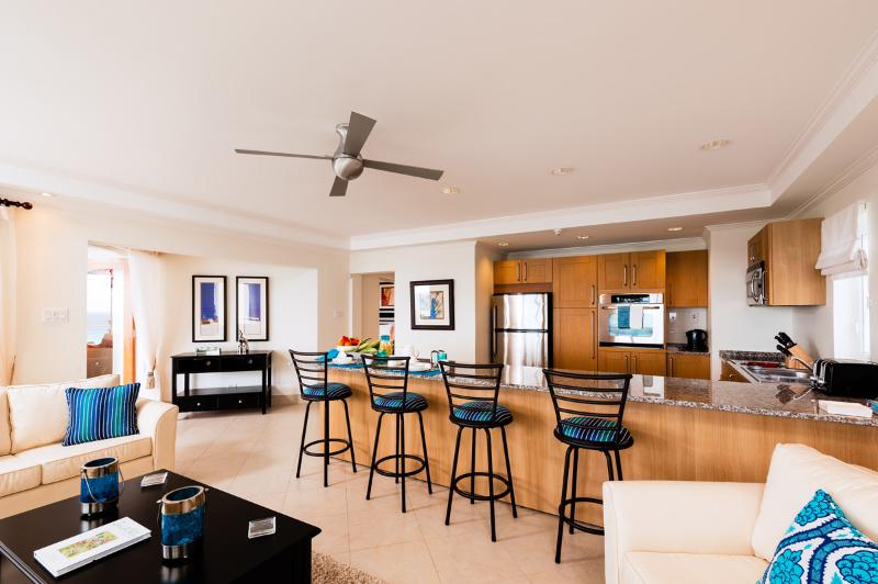 Apt 402, the Condominiums at Palm Beach, Barbados - Beachfront - Image 1 - Hastings - rentals