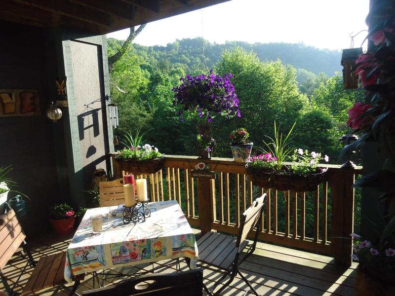 View of the deck - Condo in the trees in the Blue Ridge Mountains - Boone - rentals