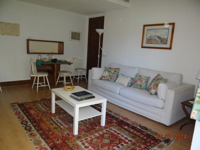living room - Beautiful and quiet apartment in Lisbon - Lisbon - rentals