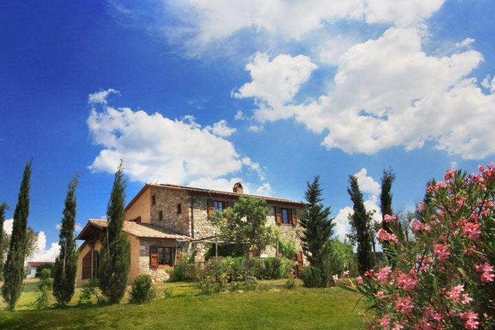 Villa il Poggio di Castellina - Charming Villa close to Beach and Cities, A/C & panoramic Pool - Image 1 - Bettolle - rentals