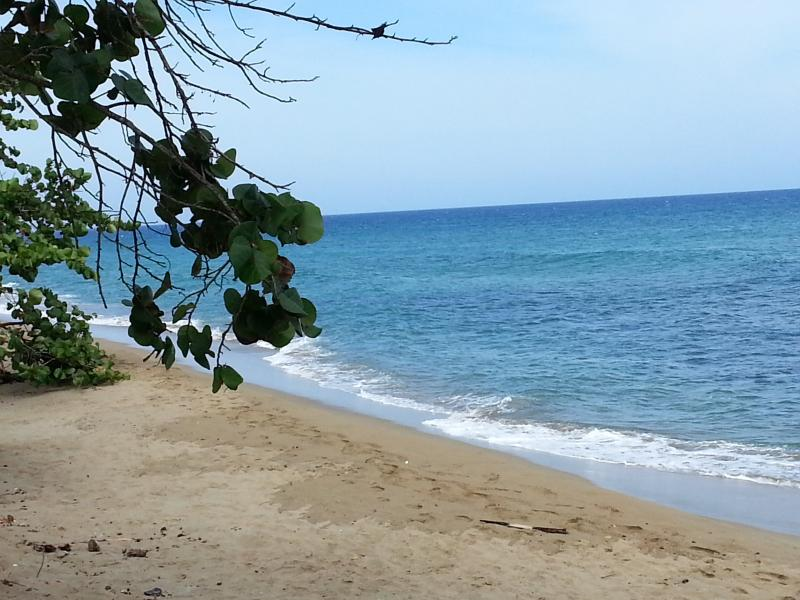 Your own private beach...steps away - Cabarete East Beachfront - Cabarete - rentals