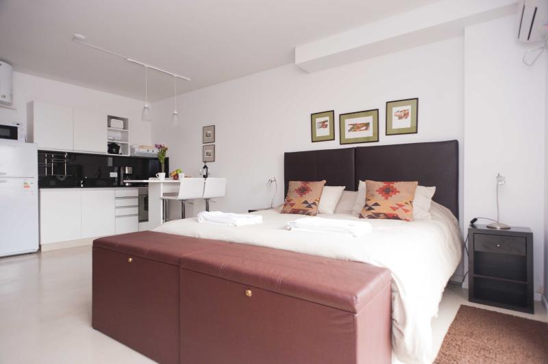 Great Studio in Palermo Soho 3PAX - Image 1 - Buenos Aires - rentals