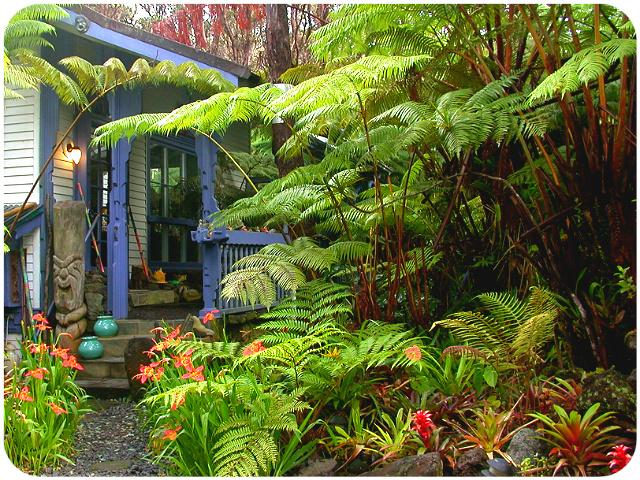 Upcountry Mauna Kilauea,Volcano Rainforest Cottage - Image 1 - Volcano - rentals