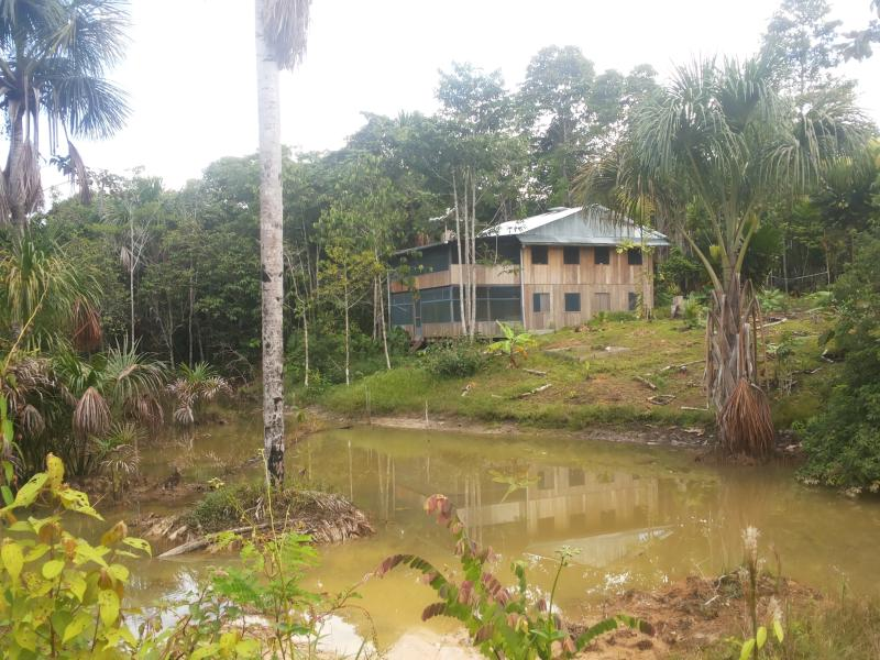 The House and first Laguna - Off-the-Grid Amazon Jungle Lodge - Tamshiyacu - rentals