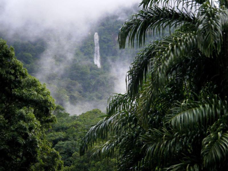 El Bejuco waterfall from our porch! - CASA de EDEN - La Ceiba - rentals