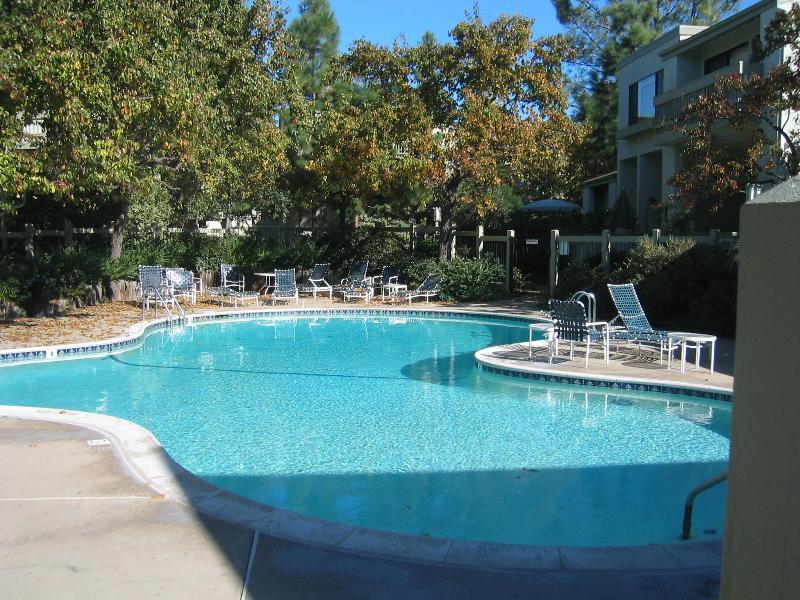 swimming pool, sauna and jaccuzi - La Jolla Village townhouse - La Jolla - rentals
