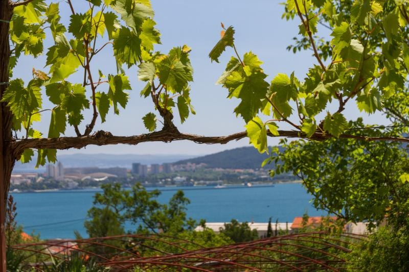 Amazing Sea View Apartment near Split - Image 1 - Kastel Sucurac - rentals