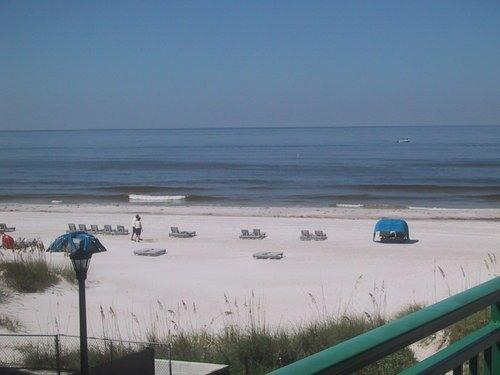 ACTUAL VIEW of the gorgeous beach from our balcony - Perfect Beachfront Condo-Jan 2016 month available - Saint Pete Beach - rentals