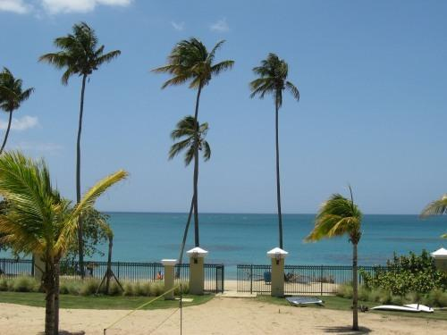 View from Balcony - Beachfront, Rainforest and Waterpark - Loiza - rentals