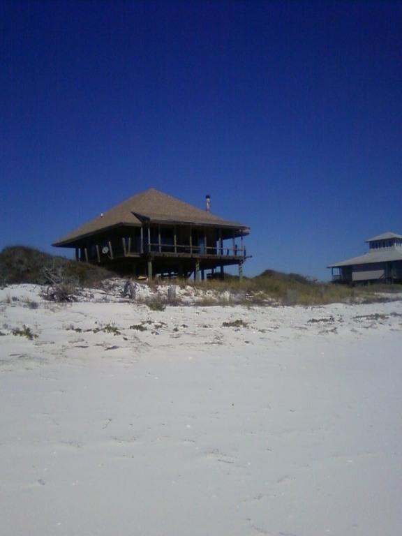 House from beach - Dog Island, FL Cottage on Gulf of Mexico - Carrabelle - rentals