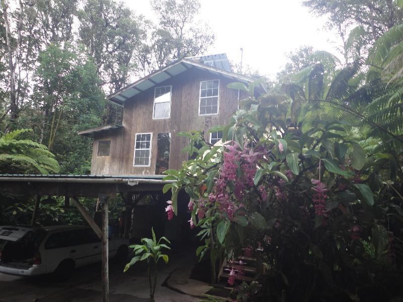 my cottage - Rustic elegant - Pahoa - rentals