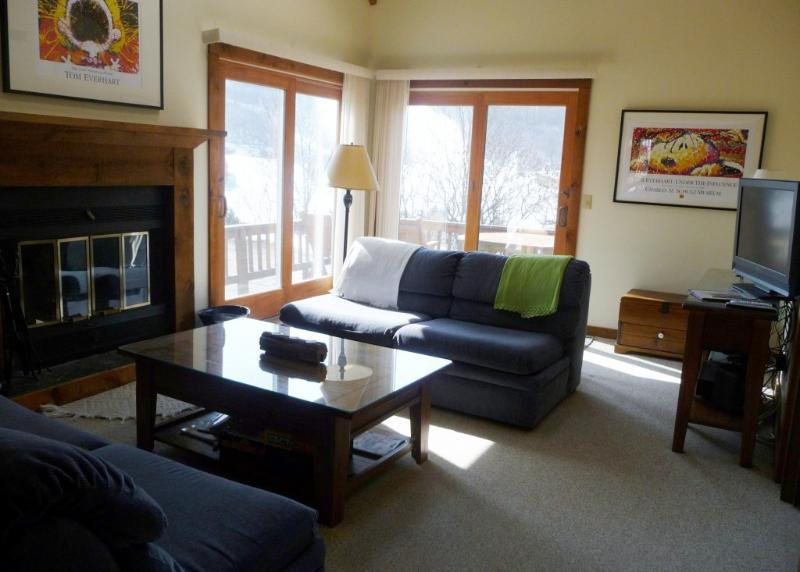 Living Room - LOCATION! ON SLOPE, HOLIDAY VALLEY,Air Conditioned - Ellicottville - rentals