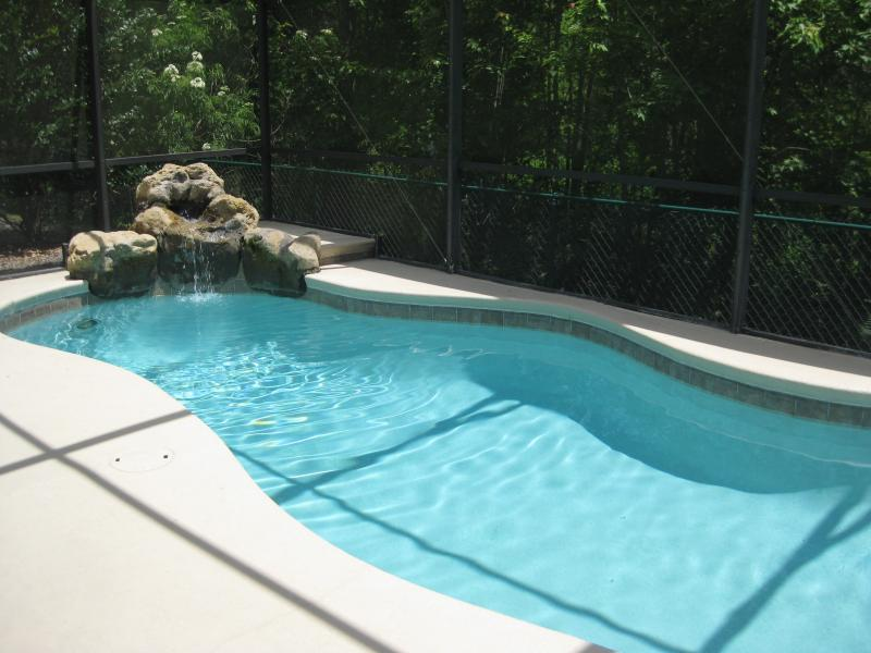 Private pool backing against conservation area - Private Secluded Pool - 8 Miles to Disney - Kissimmee - rentals