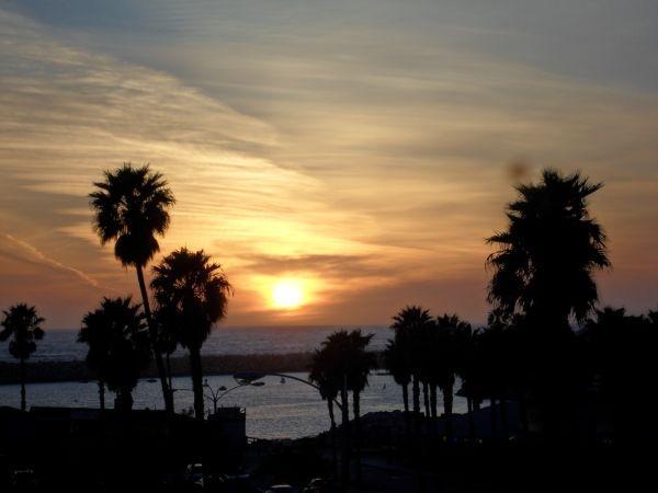 oceanfront sunset view - OCEANFRONT CONDO W/ VIEWS & POOL, STEPS TO BEACH - Redondo Beach - rentals
