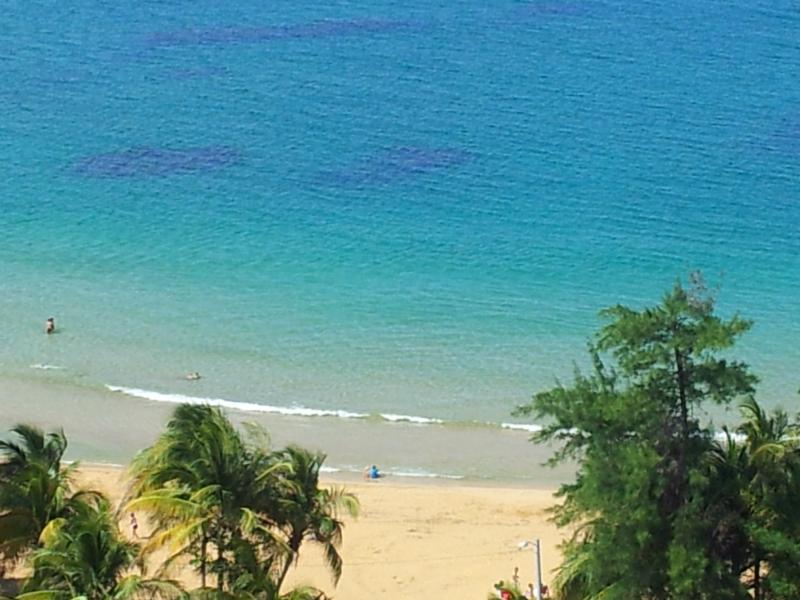 THE BEACH - BEACH FRONT PARADISE - Luquillo - rentals