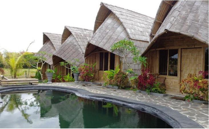 pool - Laksmi Ecottages Ubud - Ubud - rentals