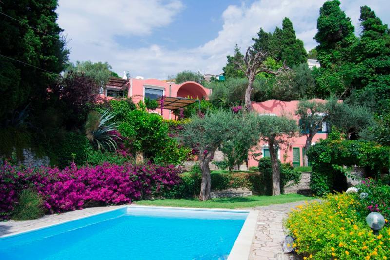 Villa Leone - Image 1 - Anacapri - rentals