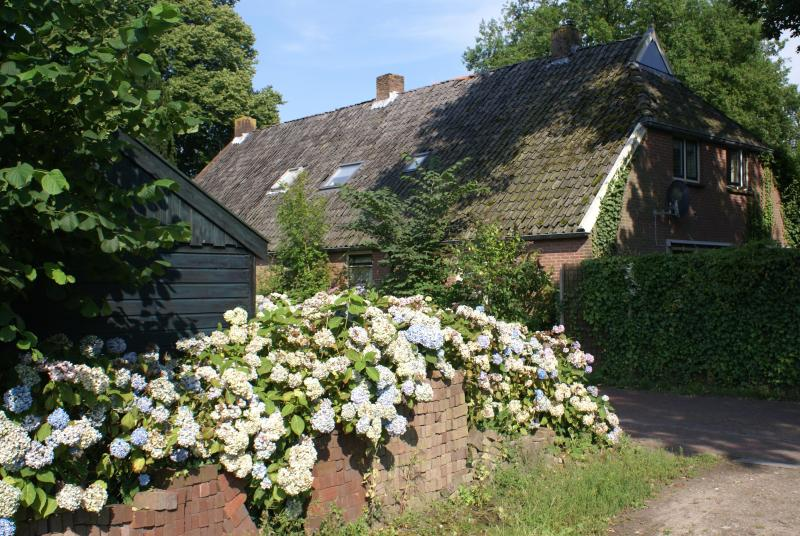 'Under the Oaks' - a farmhouse dating from 1840 - Farmhouse in Beautiful Rural Diever, Drenthe - Com - Diever - rentals