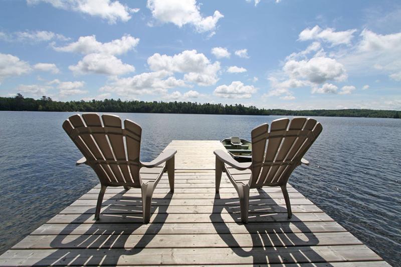 White Lake cottage (#901) - Image 1 - Irondale - rentals