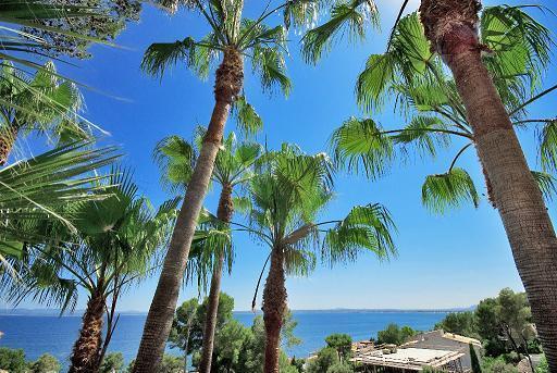 Villa with Sea View and Pool in Alcanada Alcudia. - Image 1 - Puerto de Alcudia - rentals