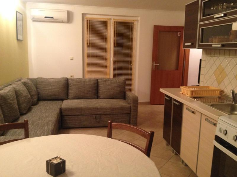 Kitchen with living room - Superb apartment on Island of Pag - Zubovici - rentals