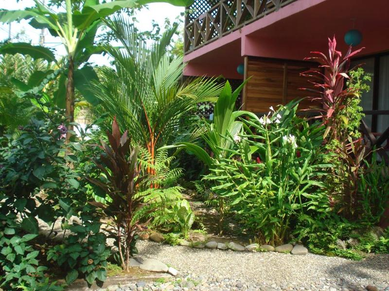 Coconut Love Beach House Apartments***Pura Vida! - Image 1 - Cahuita - rentals