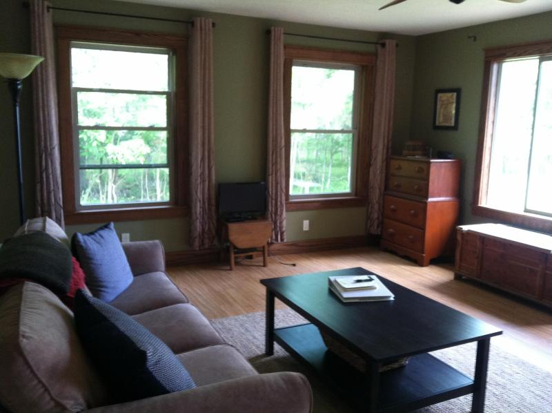 Take in the views of the lake, read a book, or watch a movie on your Netflix account. - Lakefront Cottage Near Lake MI/Sleeping Bear Dunes - Honor - rentals