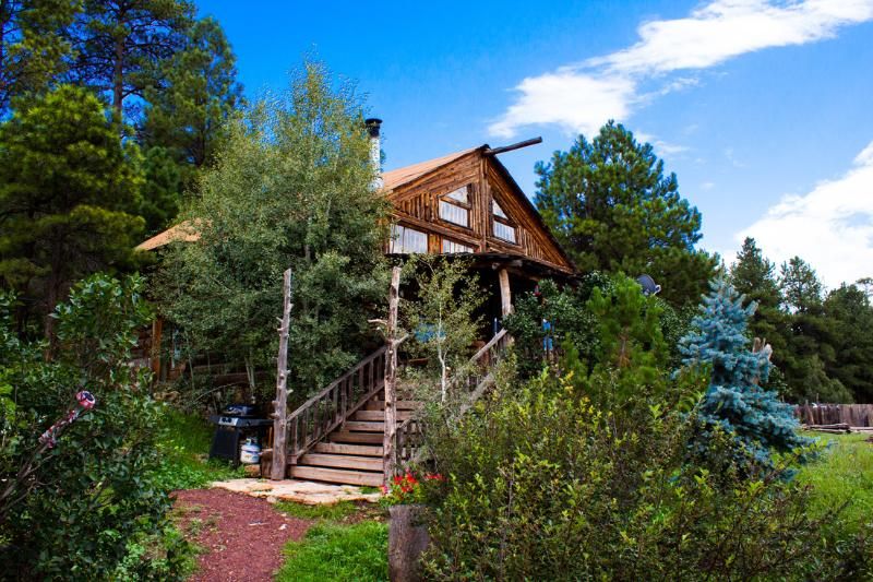 Summer at the cabin - Log Cabin Home Vacation in the tall  Pine Trees w - Flagstaff - rentals