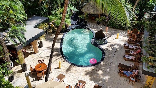 Pool area with Jacuzzi, sauna and waterfalls - Waikiki at the Beautiful Bamboo, Pool-Jacuzzi-Spa - Honolulu - rentals