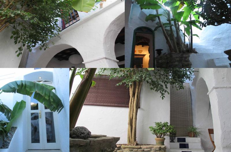 patio - Original Andalusian House with Patio - Garden - Vejer - rentals